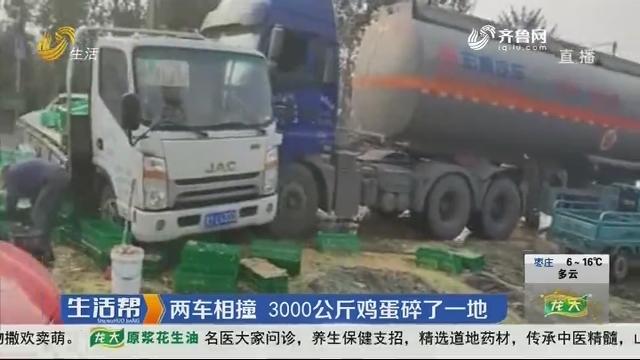 烟台:两车相撞 3000公斤鸡蛋碎了一地