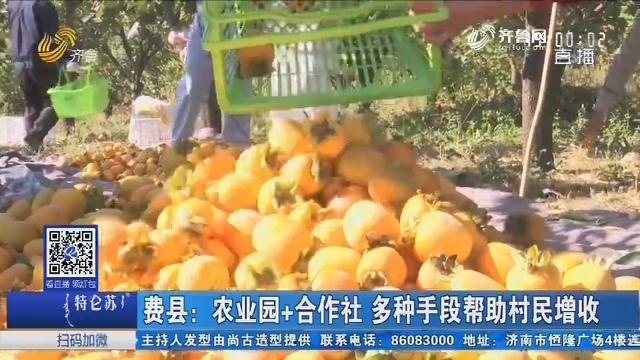 费县:农业园+合作社 多种手段帮助村民增收