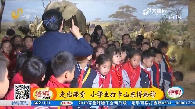 济南:走出课堂 小学生打卡山东博物馆