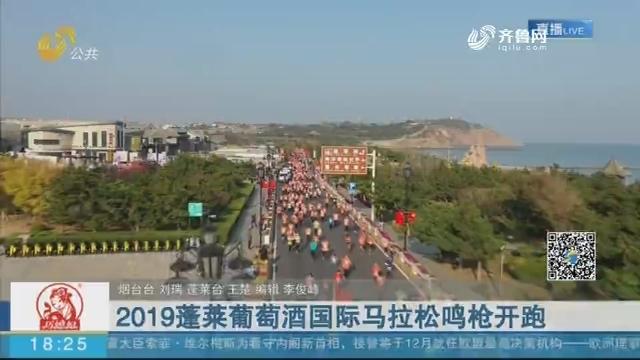 2019蓬莱葡萄酒国际马拉松鸣枪开跑
