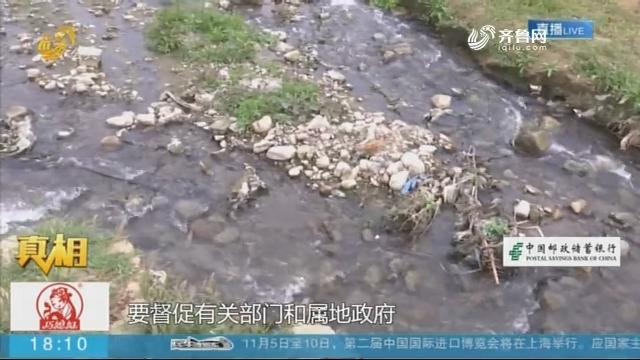 【真相·追踪】临朐:连夜清理污染死鱼 达成补偿协议