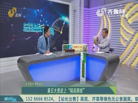20191103《总站长时间》:乡村振兴 有我站长——马兴民 谭树保 付敬
