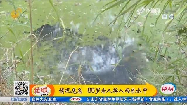 商河:情况危急 86岁老人掉入两米水中