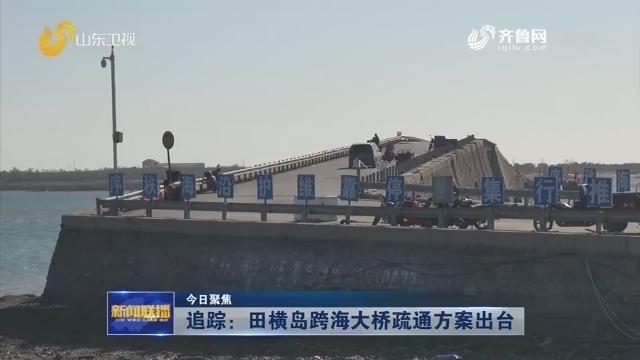 【今日聚焦】追踪:田横岛跨海大桥疏通方案出台