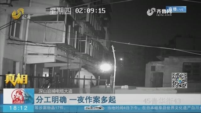 【真相】深山追捕电缆大盗:分工明确 一夜作案多起