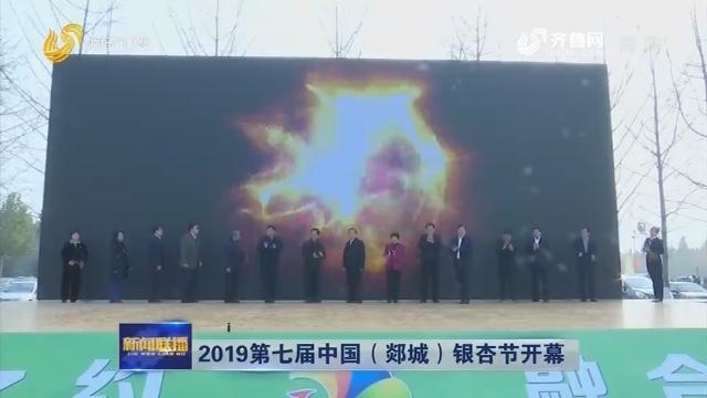2019第七届中国(郯城)银杏节开幕