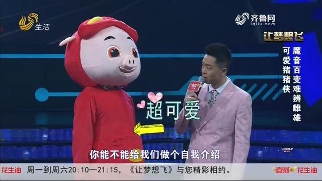 20191107《让梦想飞》:可爱猪猪侠 魔音百变难辨雌雄