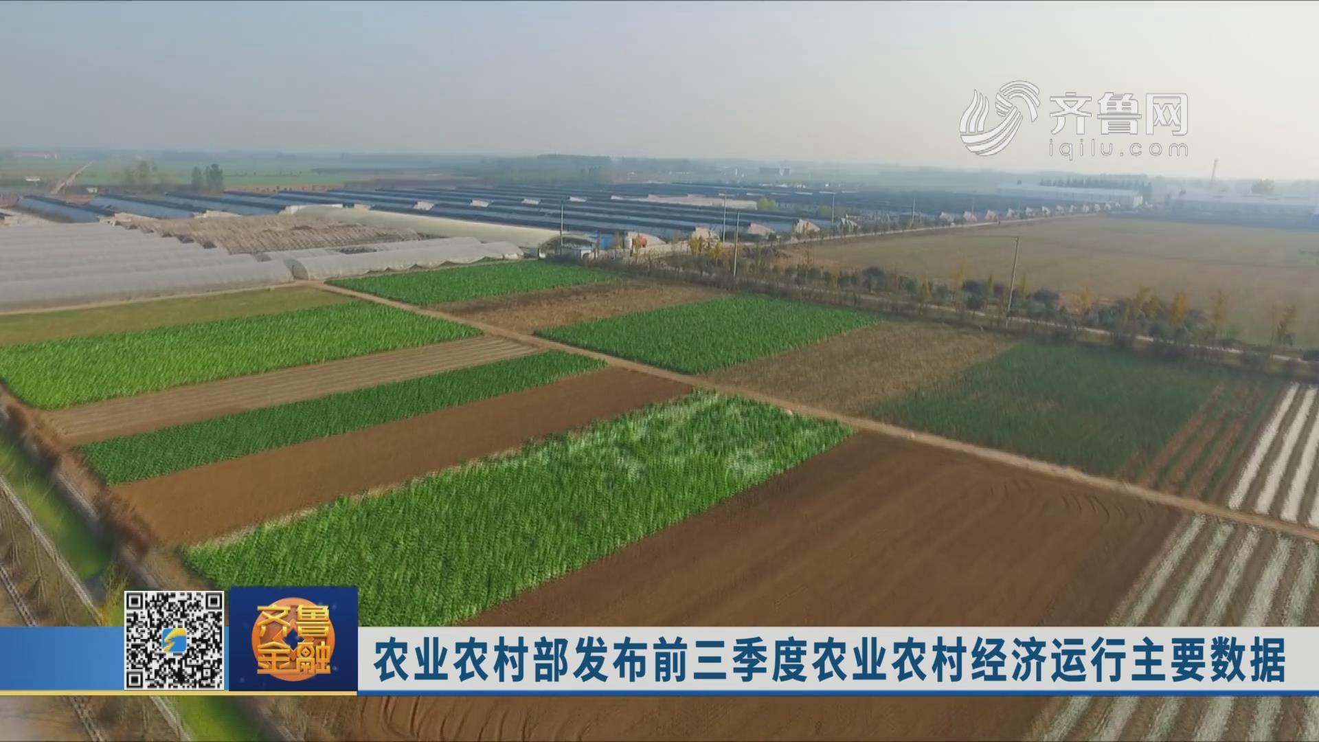 农业农村部发布前三季度农业农村经济运行主要数据《齐鲁金融》20191106播出