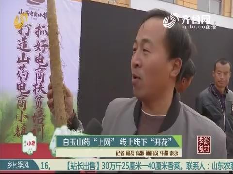 """【直播乡村】白玉山药""""上网"""" 线上线下""""开花"""""""