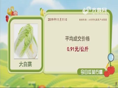 今日瓜菜行情