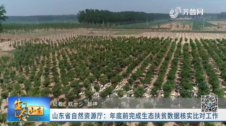 山东省自然资源厅:年底前完成生态扶贫数据核实比对工作
