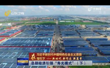 【在习近平新时代中国特色社会主义思想指引下——新时代 新作为 新篇章】总部经济引领寿光模式(下)