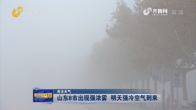 【关注天气】山东8市出现强浓雾 明天强冷空气到来