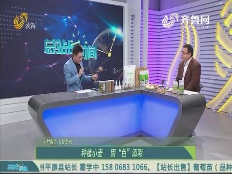 20191117《总站长时间》:乡村振兴 有我站长——刘国华 王付友