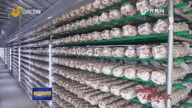 【冲刺四季度·大竞赛 大比武】山东:培育新模式新技术新平台 打造农产品出口竞争新优势
