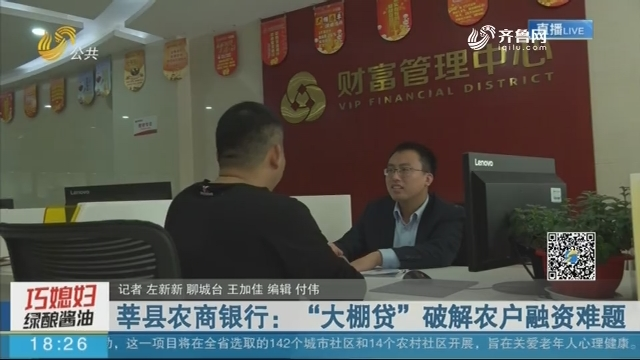 """莘县农商银行:""""大棚贷""""破解农户融资难题"""