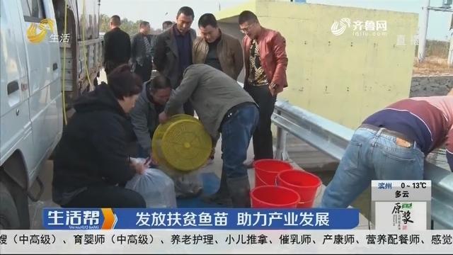 烟台:发放扶贫鱼苗 助力产业发展