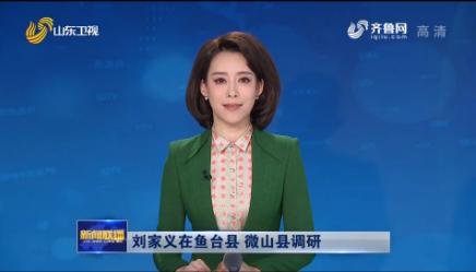 刘家义在鱼台县 微山县调研
