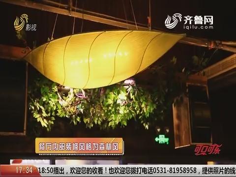 20191121《你消费我买单之食话食说》:东营新兴美食餐厅主力军