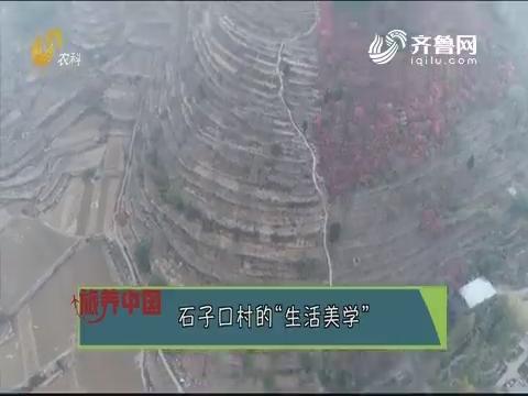 """20191122《旅养中国》:石子口村的""""生活美学"""""""