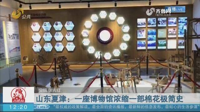 【这就是山东】山东夏津:一座博物馆浓缩一部棉花极简史