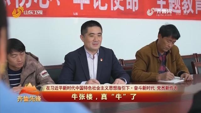 """20191126《齐鲁先锋》:在习近平新时代中国特色社会主义思想指引下·奋斗新时代 党员新作为——牛张楼,真""""牛""""了"""