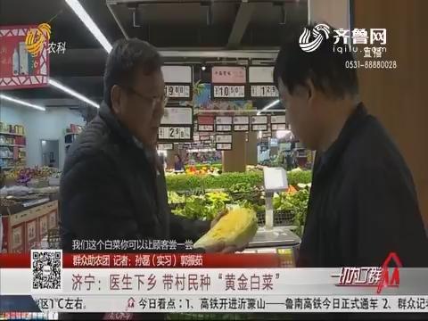 """【群众助农团】济宁:医生下乡 带村民种""""黄金白菜"""""""