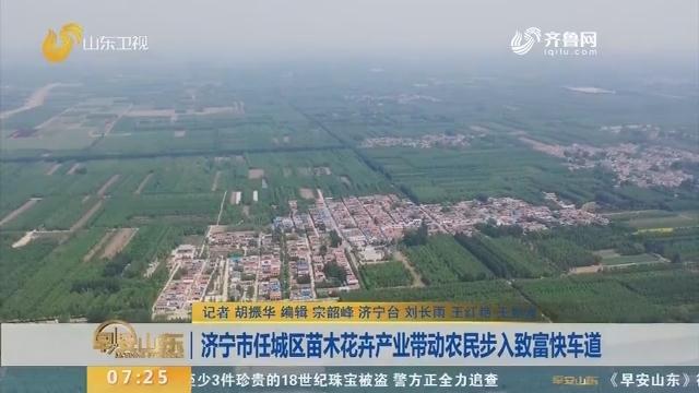 济宁市任城区苗木花卉产业带动农民步入致富快车道