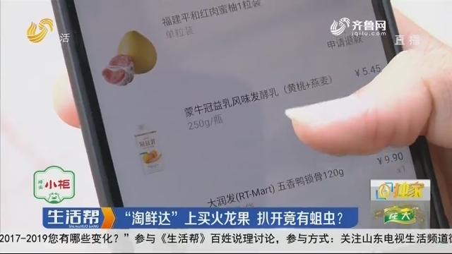 """【独家】济南:""""淘鲜达""""上买火龙果 扒开竟有蛆虫?"""