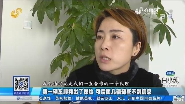 潍坊:第一辆车顺利出了保险 可后面几辆却查不到信息