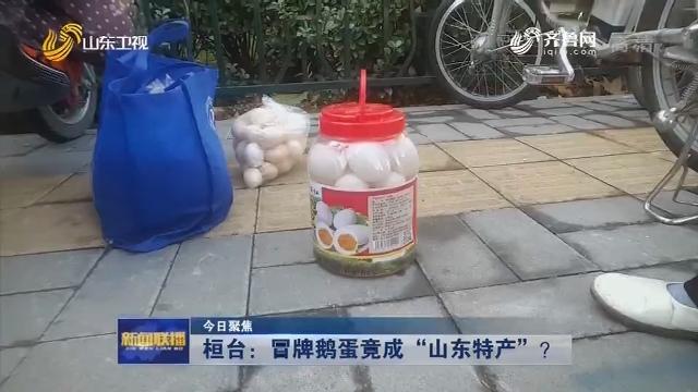 """【今日聚焦】 桓台:冒牌鹅蛋竟成""""山东特产""""?"""