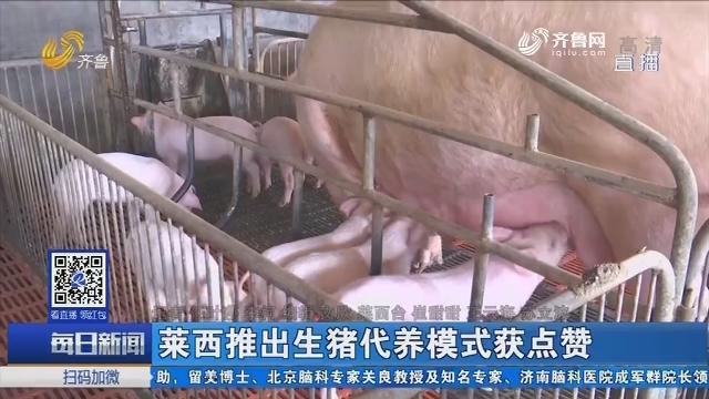 莱西推出生猪代养模式获点赞
