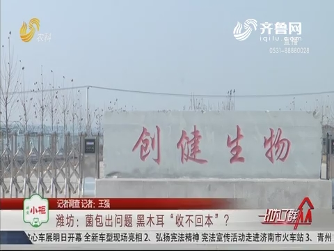 """【记者调查】潍坊:菌包出问题 黑木耳""""收不回本""""?"""