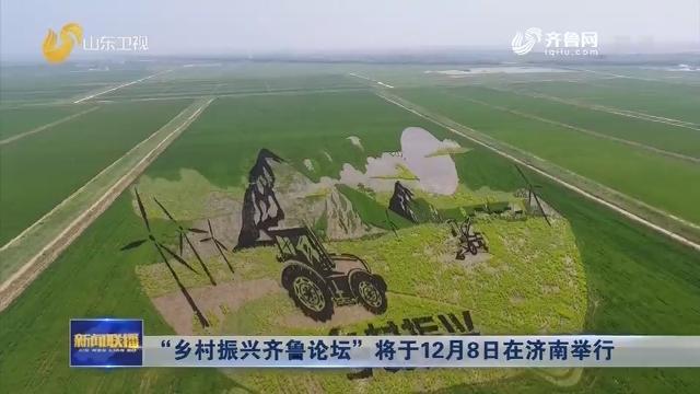 """""""乡村振兴齐鲁论坛""""将于12月8日在济南举行"""