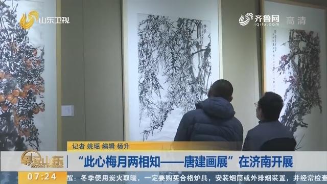 """""""此心梅月两相知——唐建画展""""在济南开展"""