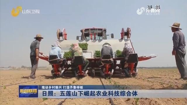 【推动乡村振兴 打造齐鲁样板】日照:五莲山下崛起农业科技综合体