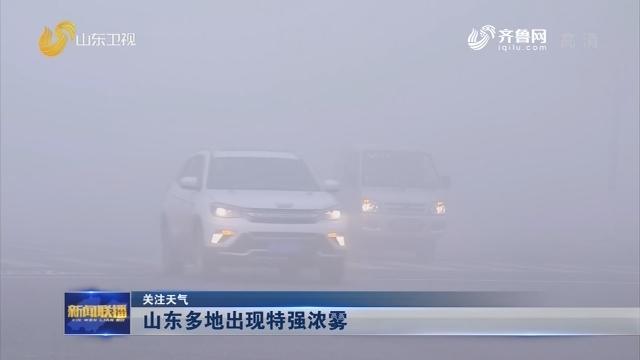 【关注天气】山东多地出现特强浓雾