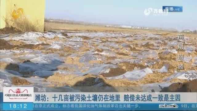 十几亩被污染土壤仍在地里 赔偿未达成一致是主因
