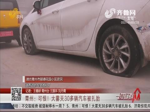 青州:可恨!大雾天30多辆汽车被扎胎