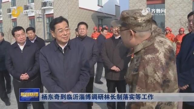 杨东奇到临沂淄博调研林长制落实等工作