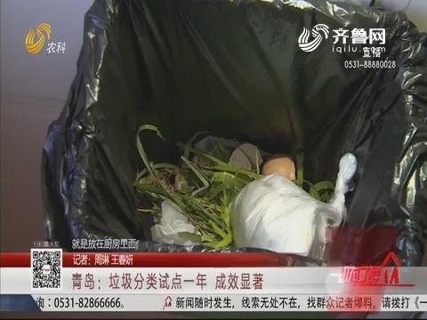 青岛:垃圾分类试点一年 成效显著