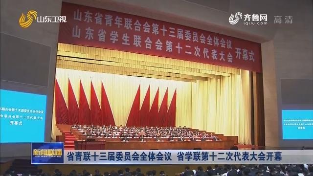 省青联十三届委员会全体会议 省学联第十二次代表大会开幕