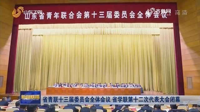 省青联十三届委员会全体会议 省学联第十二次代表大会闭幕