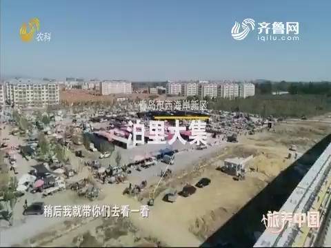 20191220《旅养中国》:青岛——泊里赶大集 美味齐上阵