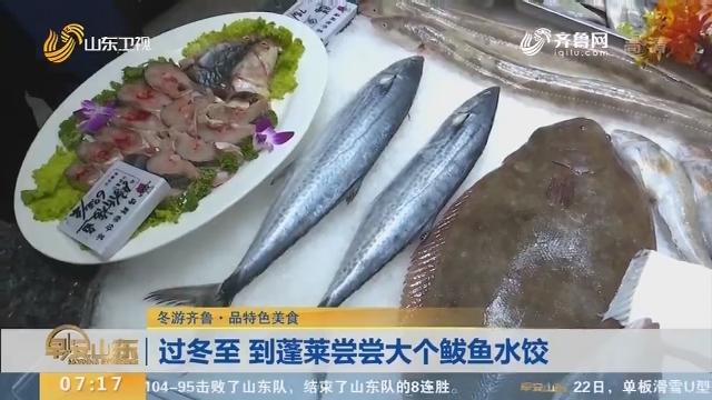 【闪电新闻排行榜】冬游齐鲁·品特色美食 过冬至 到蓬莱尝尝大个鲅鱼水饺