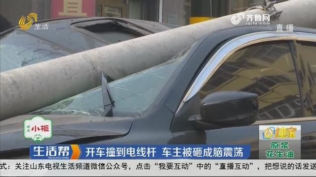 潍坊:开车撞到电线杆 车主被砸成脑震荡
