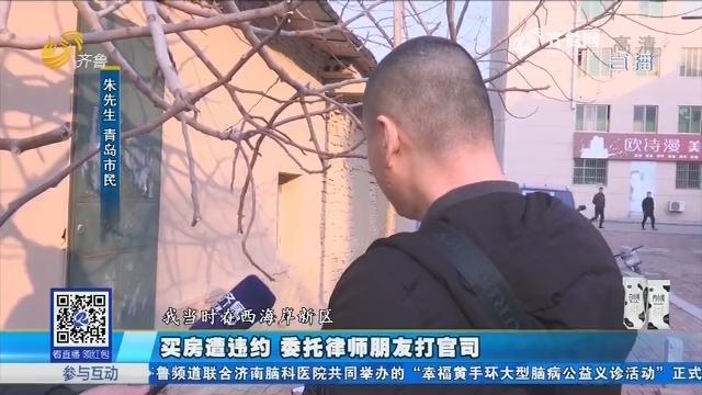 青岛:买房遭违约 委托律师朋友打官司