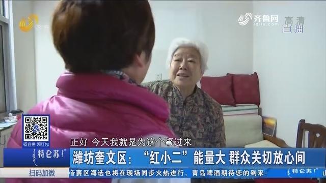 """潍坊奎文区:""""红小二""""能量大 群众关切放心间"""