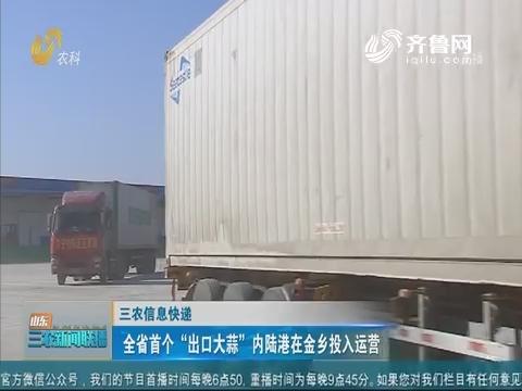 """【三农信息快递】全省首个""""出口大蒜""""内陆港在金乡投入运营"""