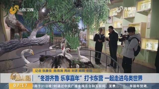 """【闪电新闻排行榜】""""冬游齐鲁 乐享嘉年""""打卡东营 一起走进鸟类世界"""